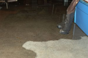 Hillsboro home with basement water penetration